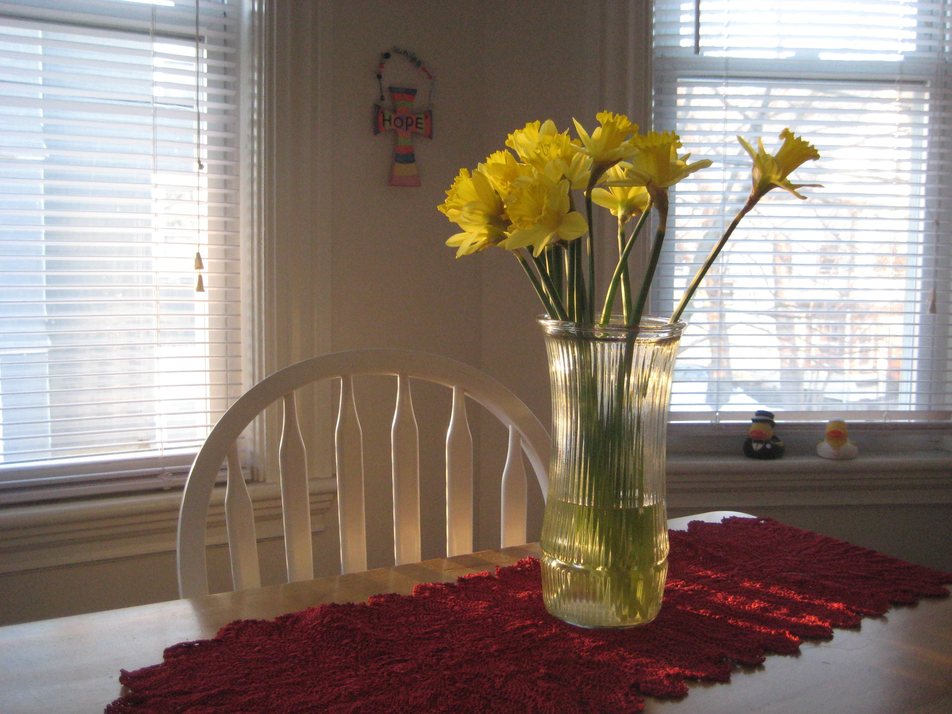 daffodils sunshine morning table