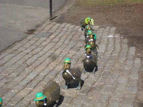 ducklings, robert mccloskey, st. patrick's day