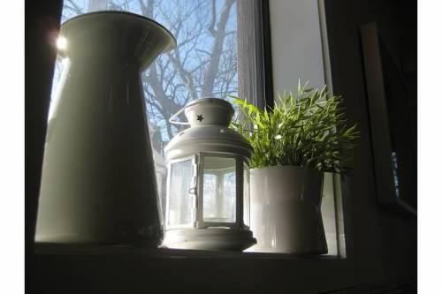 light cafe window