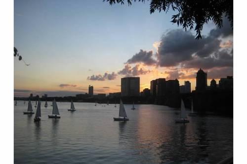 sailboats charles river boston summer