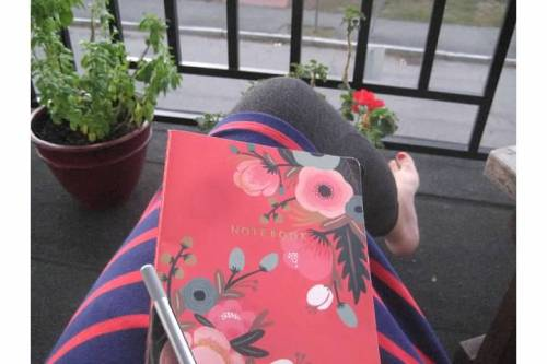 journal stripes patio flowers porch