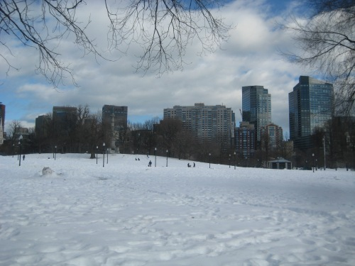 boston common snow winter february