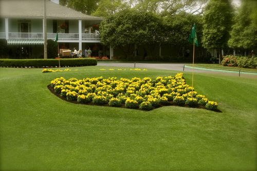 masters logo flowers