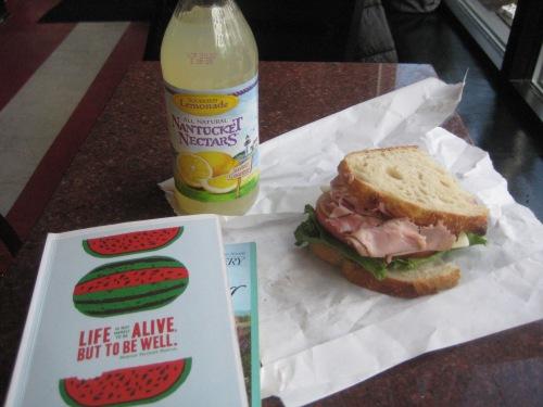 darwins sandwich journal