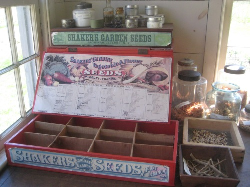 shaker seeds