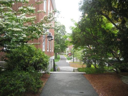 longfellow garden radcliffe yard