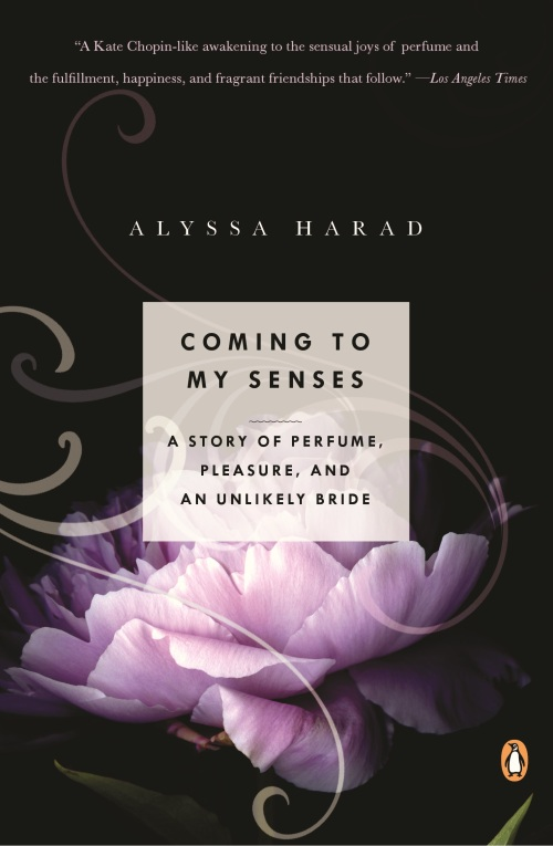 coming to my senses alyssa harad paperback