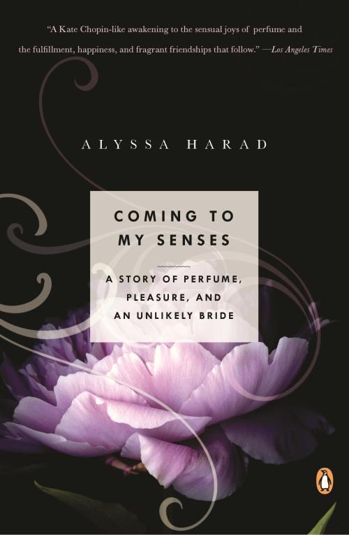 coming to my senses alyssa harad paperback