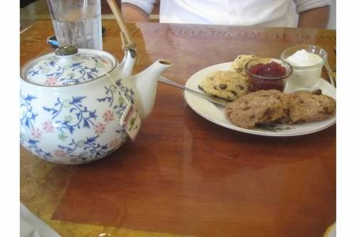 optimist cafe scones yarmouthport ma
