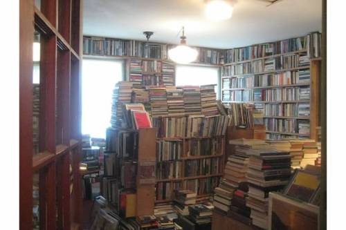 stone soup books interior camden maine