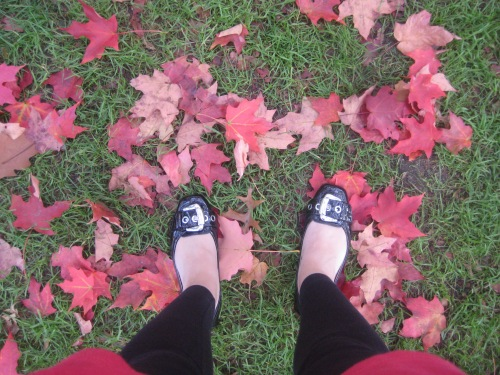 shoes red leaves