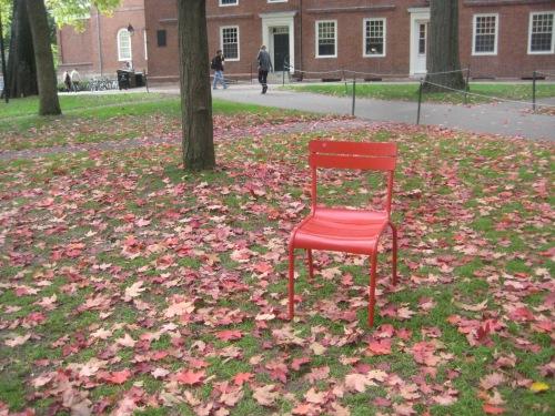 red chair autumn leaves harvard yard