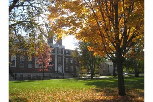 tree longfellow hall harvard autumn cambridge ma