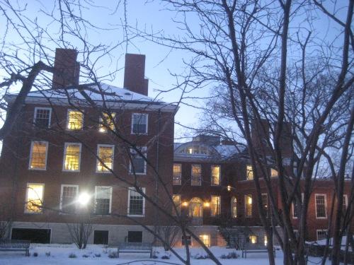 snow hgse light windows