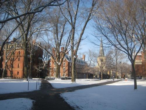 snow winter harvard yard
