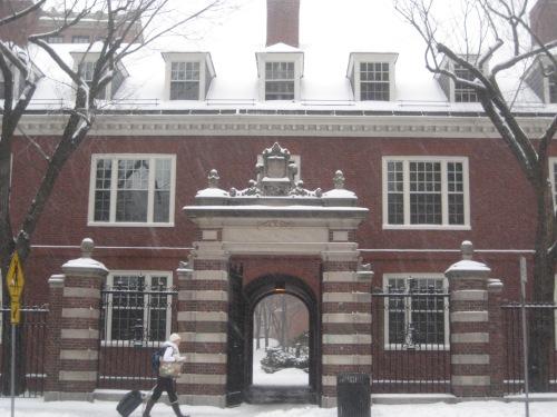 snow harvard yard gate
