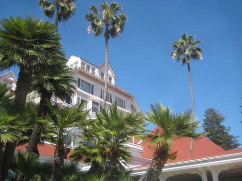 hotel del coronado palm trees