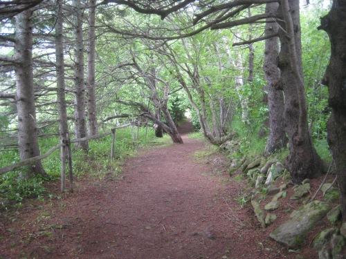 green gables path pei