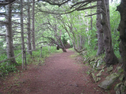 green gables path pei