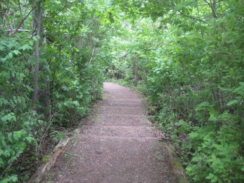 haunted wood path pei