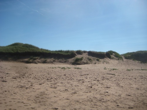 sand dunes pei beach