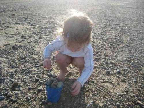 sarah shells beach