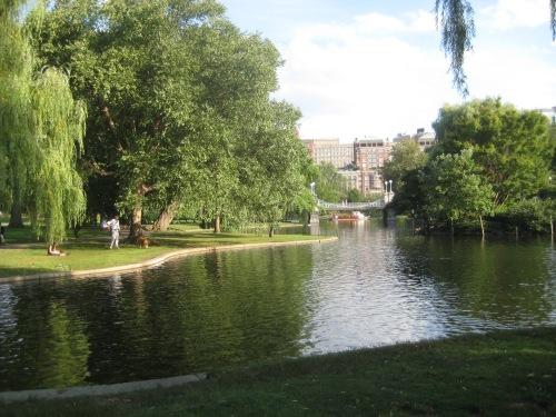 reflection public garden boston ma