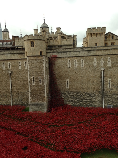 poppies tower of london