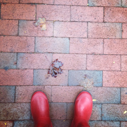 red wellies leaf sidewalk