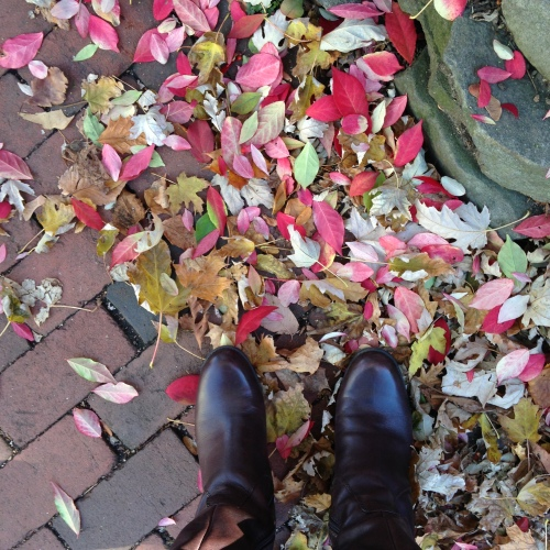 red leaves brown boots fall