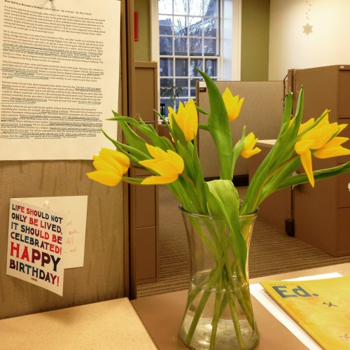 yellow tulips desk