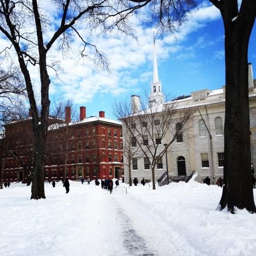harvard yard snow blue sky