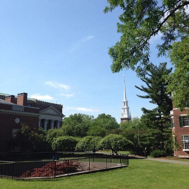 harvard yard memorial church view