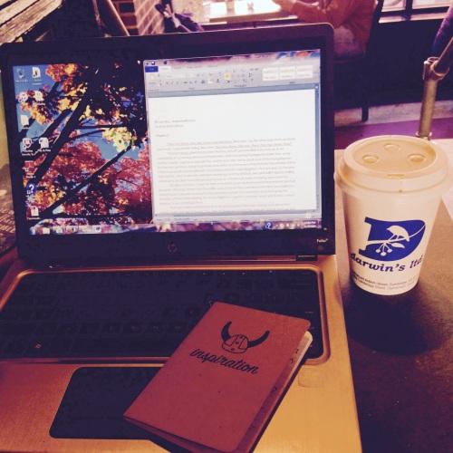 nanowrimo laptop chai darwins
