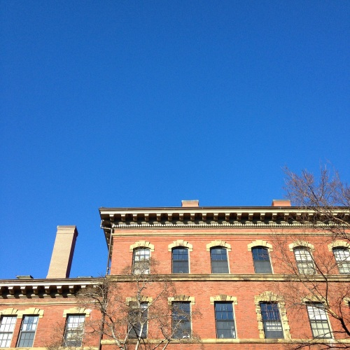 blue sky red brick harvard yard