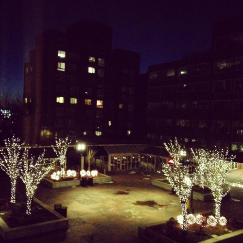 charles hotel courtyard view cambridge ma