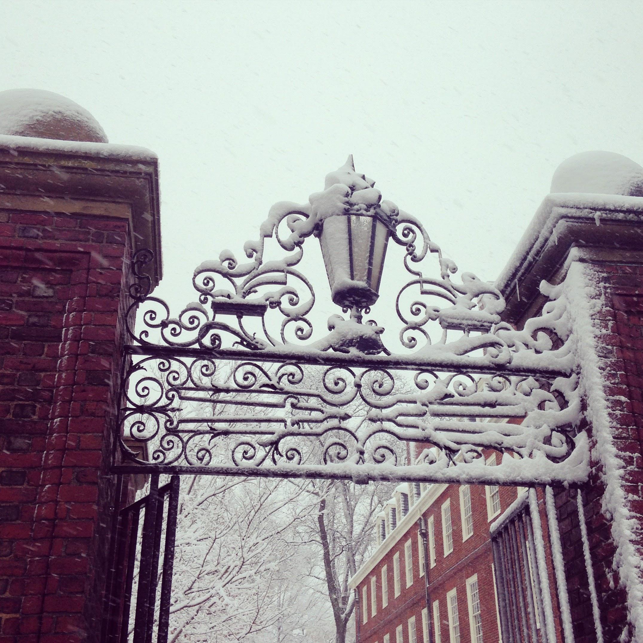 johnson gate harvard snow