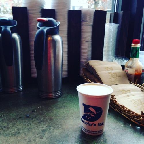 darwins chai cup creamer coffee shop cambridge ma