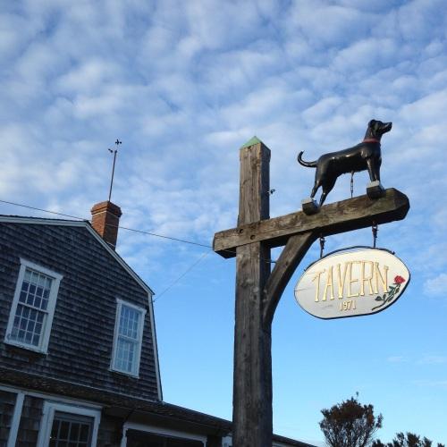 black dog tavern vineyard haven marthas vineyard