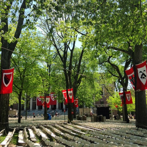 harvard yard banners commencement 2016