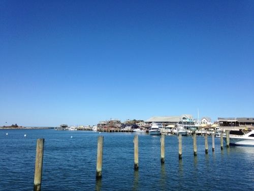 oak bluffs harbor martha's vineyard
