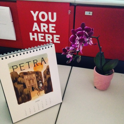 you are here orchid desk