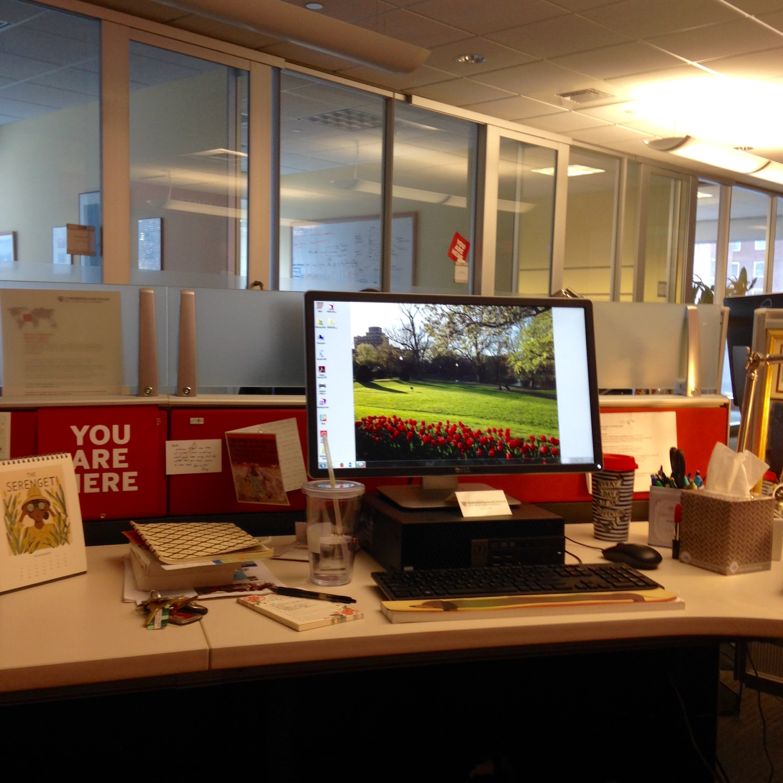 hks desk view