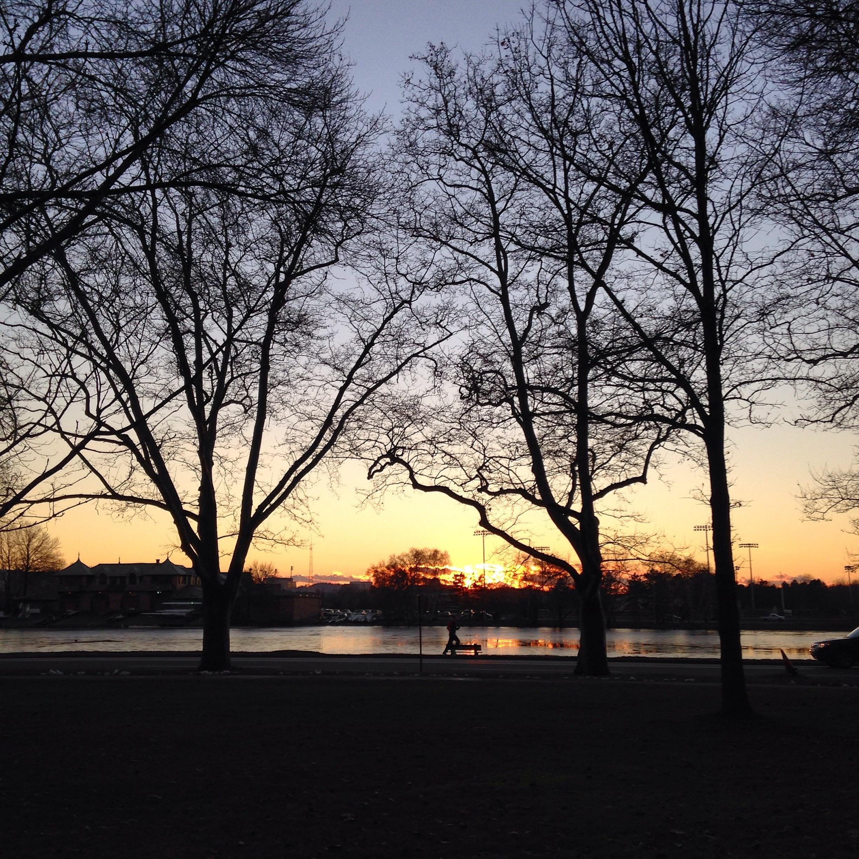 charles river cambridge sunset