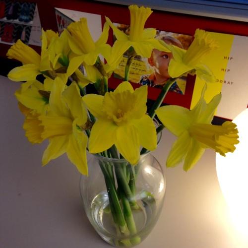 daffodils desk