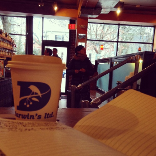 darwins notebook chai