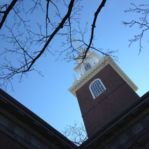 memorial church harvard spire branches blue sky