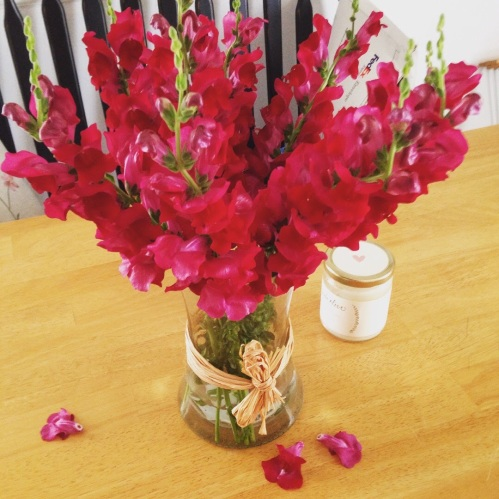 crimson snapdragons table flowers