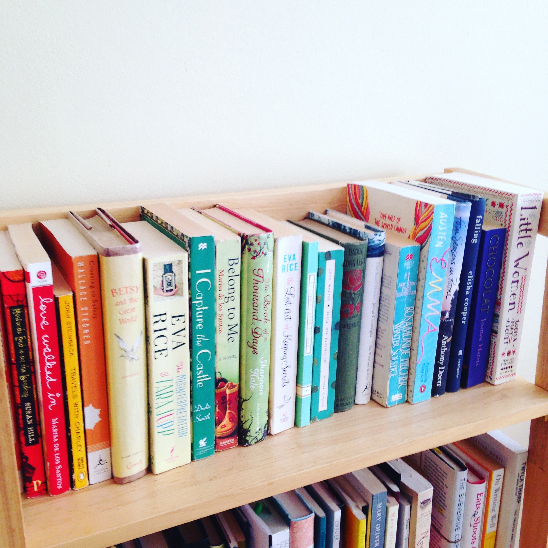 rainbow spines bookshelf books color
