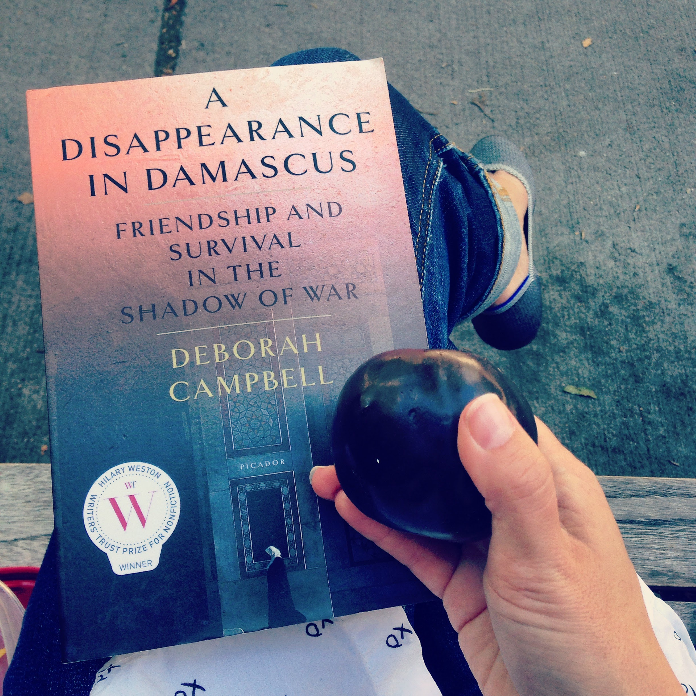 disappearance damascus book plum